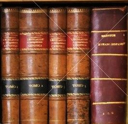 Biblioteca Diaspora